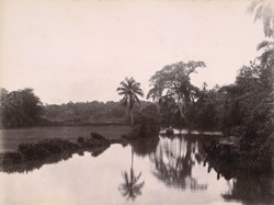 A Backwater, Travancore.